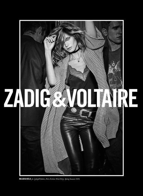 zadig-(4)