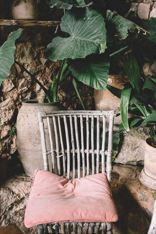 violeta-mango-ver-(4)