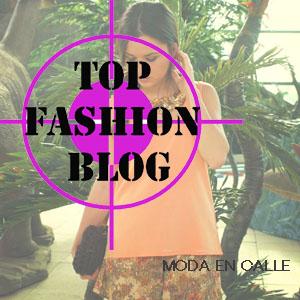 top fashion blog malu